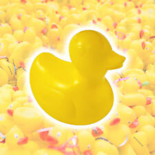 Yellow Plastic Racing Ducks - Rubber Bath Duck Race Charity Fundraising Fair Toy
