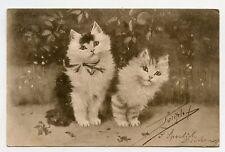 SPERLICH . Jolis Chats . Cats . Katze . Gato