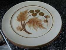 DENBY COTSWOLD DINNER PLATES X 4