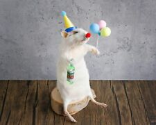 More details for taxidermy mouse / rat / rodent - the sad clown - made to order!