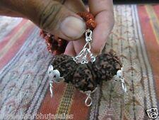 Rare Original trijuti Tridave Brahma Vishnu Mahesh Mukhi Java Beads Rudraksha