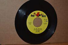 JEFF BARRY: I'LL STILL LOVE YOU; 1965 RED BIRD 10,026 MINT- NORTHERN SOUL 45 RPM