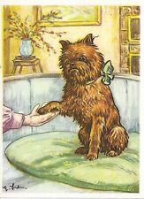 1952 Dog Art Print Austria Bildwerk Card Red Rough Brussels Griffon Bruxellois