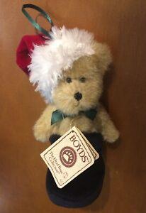 "Boyd's Bears Tiny Bear Plush Named S.C.Bootsley 5"""