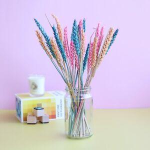Tropical Twist Dried Flower Letterbox Bouquet