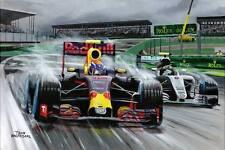 Print on canvas Max Verstappen: Rain King Brazilian GP 2016 door Toon Nagtegaal