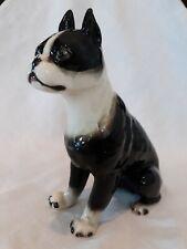 1945-1952 Occupied Japan Boston Terrier Figurine Anatomically Correct!