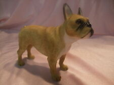 Statue de collection LEONARDO -  BOULEDOGUE FRANCAIS FAUVE