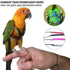 Pet Parrot Bird Harness Lead Leash Flying Training Rope Cockatiel Outdoor W4 Us