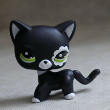 Littlest Pet Shop Short Hair Cats Ebay