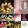 20 LED Rose Flower Fairy String Lights Wedding Garden Party Romantic Decoration