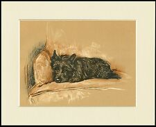 SCOTTISH TERRIER LYING ON CHAIR LOVELY DOG PRINT MOUNTED READY TO FRAME
