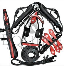 Premium Bradford Leather Driving Harness with Silver Metal Fittings - Horse