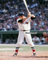 MLB Boston Red Sox Carl Yastrzemski at the Plate Color 8 x 10 Photo Picture