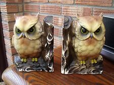 Old Pair of Pottery Owl Money Boxes Owl Bookends