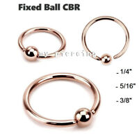 2pcs. 20g 18g Rose Gold IP Fixed Ball Captive Bead Ring Hoop Nose Labret Tragus