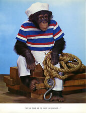 1 Vintage Art Photo Page Chimp Chat 1960's Monkey Sailor Boating Navy Nautical