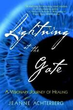 NEW - Lightning at the Gate by Achterberg, Jeanne
