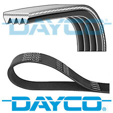 DAYCO V-RIBBED BELT 4 RIBS 875MM AUXILIARY FAN DRIVE ALTERNATOR BELT 4PK875