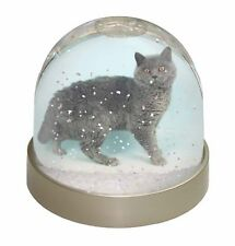 Silver Grey 'Blue' Selkirk Rex Cat Photo Snow Globe Waterball Stocking, AC-110GL
