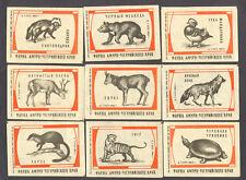 USSR Russian Amur Edge Fauna Matchbox Labels Set 1963