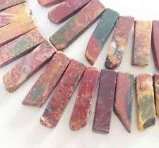 "Gradual Flat Natural Piccaso teeth spike Gemstone Freesize beads 15"""