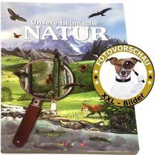 XXL Bestimmungsbuch für Kinder: Unsere heimische Natur (Sachbilder-/Wimmelbuch)