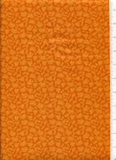 ~ DINOSAUR TRAIN BONES ~ fabric BUDDY shade of orange coordinate bty