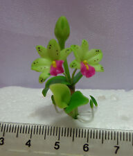 1:12 Scale Orchid Flowers,(Light Green) Garden