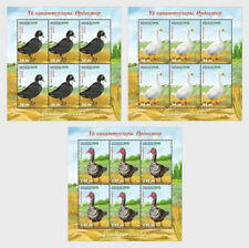 Kyrgyzstan KP 2019 Poultry Ducks farm animal bird aves vogel oie canard 3ms6v **