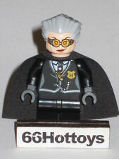 Lego Harry Potter 4737 Madam Rolanda Hooch Minifigure New
