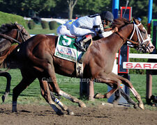 Will Take Charge 2013 Travers Stakes 8x10 Photo