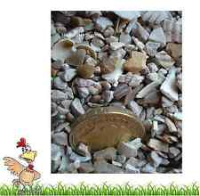 2kg MIXED POULTRY CHICKEN DUCK HEN GRIT WITH OYSTER SHELL  Hatching eggs pigeon