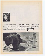 PUBLICITE ADVERTISING 104 1966 PERRIER mes amours mon teckel ma cooper