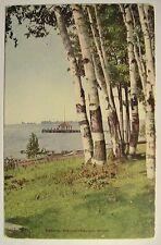 Weguetonsing MI Beach Scene DB Postcard ca 1910 Party Pier?