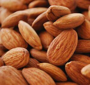 ALMONDS ALMOND NUTS 1KG Best Quality Superfood Brain Food 100% FREE UK P&P