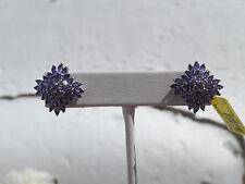 Platinum/SS 4.80tgw Genuine Catalina Iolite Marquise cuts Stud Earrings