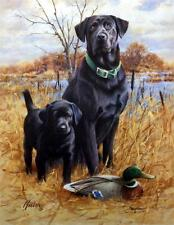 James Killen Like Father Like Son Black Lab Print Signed 14 x 18