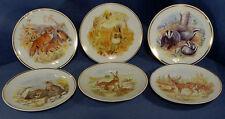 Set of 6 Wildlife in Britain Plates Designed by Susan Beresford Readers Digest