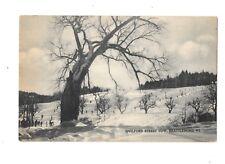 VTG Postcard Guilford Street Tow Brattleboro VT Black & White Skiers