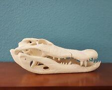 "Real 18"" Alligator Skull Head Skeleton Reptile VERY LARGE"