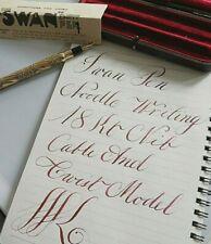 Swan mabieTodd cable and snail pen 18k FLEX 313 NOODLE nib