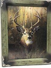 "Buck Deer 3-D Hologram Framed Picture Hunting Man-cave Hanging Decor 18""x 14""x1"