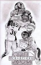 Pittsburgh Steelers superbowl champions photo print art