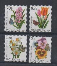 Set di 4 Giacinto Tulip Viola NARCISO FIORI PIANTE Moldavia 2011 FRANCOBOLLI Gomma integra, non linguellato