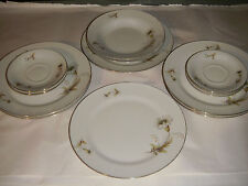 14 PIECE TIRSCHENREUTH BAVARIA PT GERMANY DISHES PLATES WHITE ASTER FLOWERS GOLD