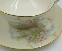 Vintage Theodore Haviland New York Apple Blossom China Tea Cup & Saucer