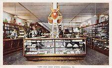 A75/ Bushkill Pennsylvania Pa Postcard c'10 Turn and Cook Store Interior Counter
