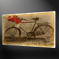 RETRO VINTAGE BICYCLE WITH RED FLOWERS BOX CANVAS PRINT WALL ART PICTURE