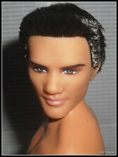 NUDE KEN MATTEL TWILIGHT JACOB  MODEL MUSE BRUNETTE RAVEN KEN  DOLL FOR OOAK